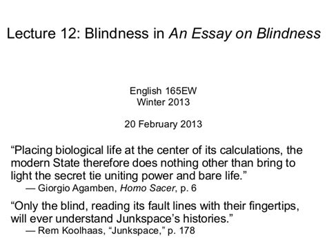 essay on blindness book thief themes essay antitesisadalah x fc2 com