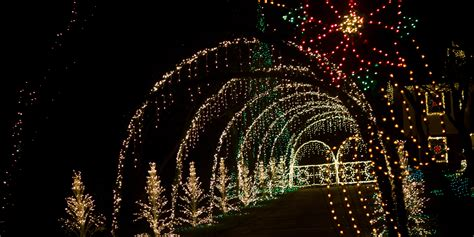 the best light displays in los angeles moving