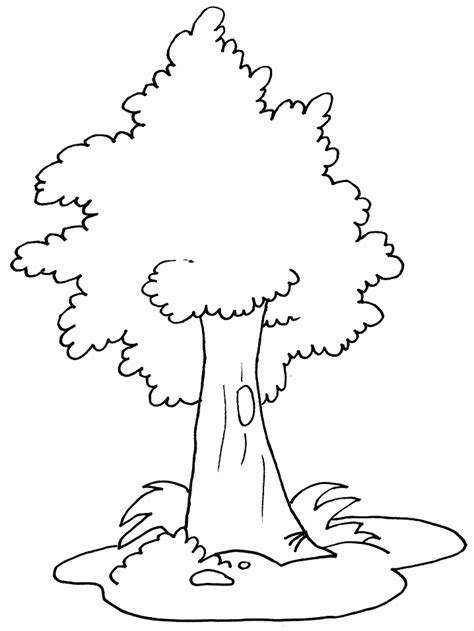 Coloring Tree by Free Printable Tree Coloring Pages For