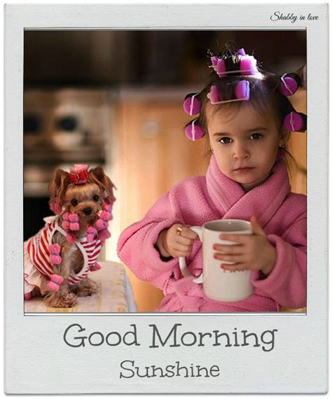 Good Morning Ladies Meme - 78 best images about good morning beautiful on pinterest beautiful days the lord and good