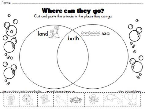 Colors And Kindergarten My Science Journal Ocean