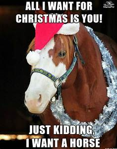 52 best images ... Funny Christmas Horse Quotes