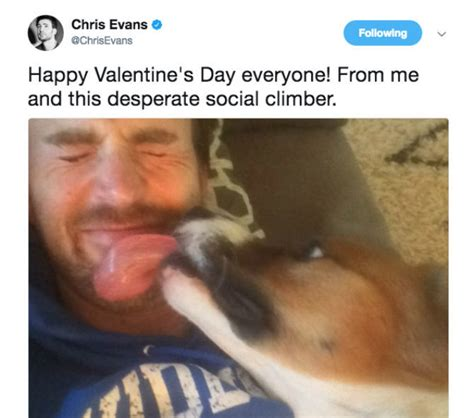 Chris Evans' Love for His Dog Dodger Is Just the Sweetest ...