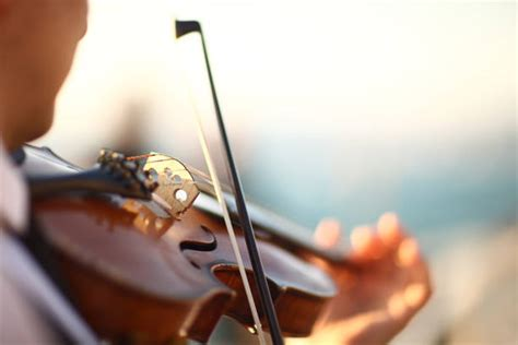 violin stock  pictures royalty  images istock