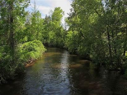 Michigan Cedar Gladwin River County Wikipedia Commons