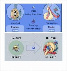 Top 7 wierd evolutions | Pokémon Amino