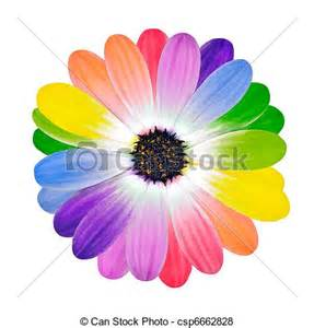 Colored Daisy Flowers Clip Art