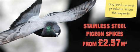 enviroguard bird sales and installation