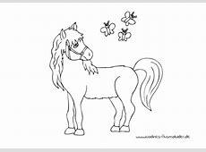 Lustige Bilder Pferd Geburtstag Die Bilder Coleection