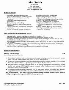 59 best best sales resume templates samples images on With great sales resume