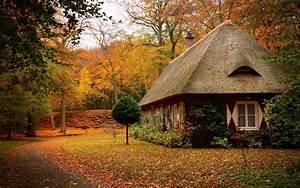 Wallpaper autumn, park, path, leaf, house, tree, forest ...