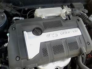 Hyundai Elantra 2 0 Engine