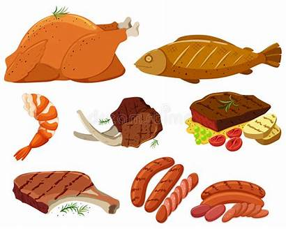 Meat Types Different Grilled Vector Illustration Premium