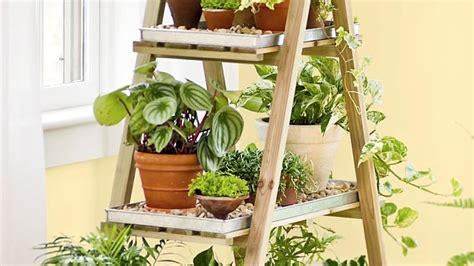 Indoor Gardening : 9 Tools That Make Indoor Gardening Ridiculously Easy