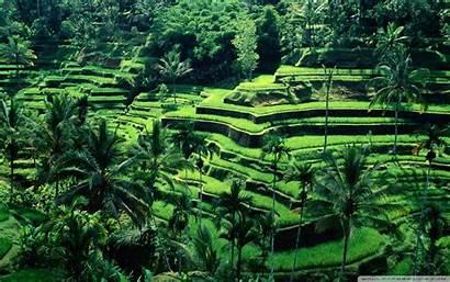 Indonesia Wallpapers Bali Desktop Definition