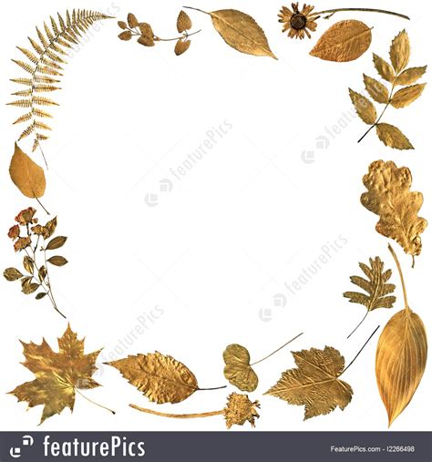 gold leaf design abstract leaf design picture