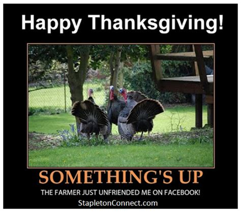 Happy Thanksgiving Memes - funny happy thanksgiving memes image memes at relatably com