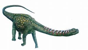 Argentinosaurus huinculensis by T-PEKC on DeviantArt