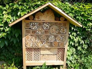 Tiere Im Insektenhotel : wildbienenhotel foto bild tiere wildlife insekten bilder auf fotocommunity ~ Whattoseeinmadrid.com Haus und Dekorationen