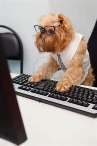 Dog with Glasses On Computer