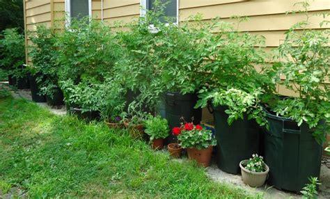 Edible Container Gardening Registration, Sat, Apr 28, 2018