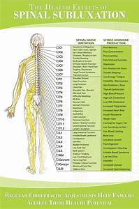 Nerve Chart  Great Chart Showing How Spinal Nerve Irritation Affects Our Physical And Mental