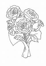 Rose Coloring Roses Pages Drawings sketch template