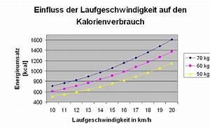 Kalorienbedarf Berechnen Formel : kalorienbedarf berechnen ~ Themetempest.com Abrechnung