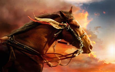 War Horse Wallpapers 5 - 2880 X 1800