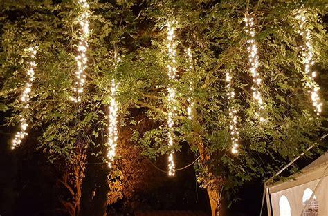 Fairy Lights  Noleggio Catering Gazebo E Luci Wedding