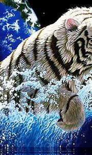 Cool Wallpapers Blog: Amazing White Tiger Wallpapers