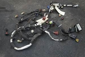 Ford F250 Wiring Harnes