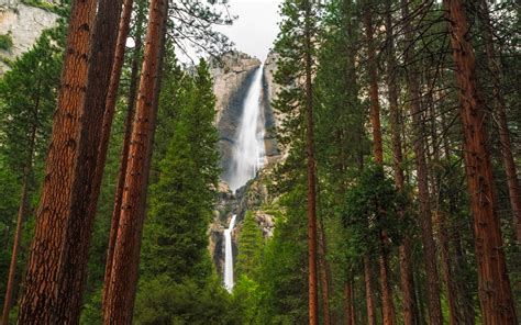 Yosemite Waterfalls Are Roaring Back Life After Years