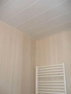 Lambris Pvc Pour Plafond : lambris pvc pour plafond salle de bain id es d coration ~ Dailycaller-alerts.com Idées de Décoration