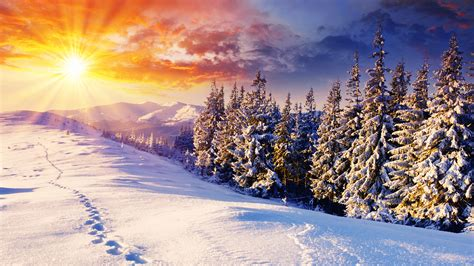 Free Winter Background by Beautiful Winter Backgrounds 51 Images