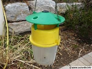 Fabriquer Un Piege A Guepes : comment pi ger les gu pes ~ Melissatoandfro.com Idées de Décoration
