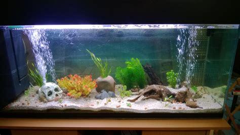 vente privee batterie cuisine meilleur aquarium de 28 images meilleur prix acrylique fish tank aquarium pour vente r 233