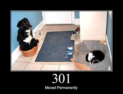 301 Moved Permanently - HTTP Status Dogs