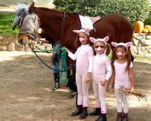 Three Little Pigs Wolf Costume