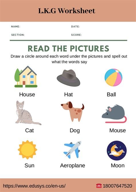 lower kindergarten english worksheet free pdf