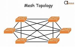 Network Topologies  Star  Mesh  U0026 Hybrid