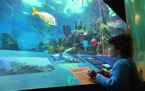 damaged coney island aquarium reopens hamodia