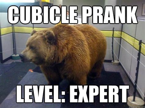 Cubicle Meme - cubicle prank level expert office grizzly quickmeme