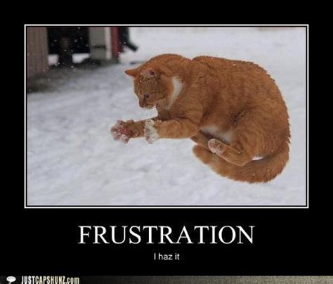 Frustrated Meme - funny frustrated memes image memes at relatably com