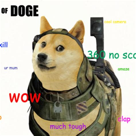 dog minds   business chewing   bone  ninja