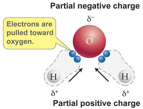 Why Are Metallic Compounds Insoluble In Water? Socratic