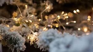 Led Christmas Lights Vs Regular Led Vs Regular Christmas Lights Pros Cons Comparisons