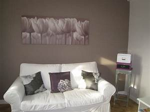 salon photo 6 6 mur taupe vers le canape les With mur couleur taupe clair
