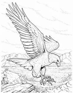 20 Cute Eagle Coloring Pages For Your Little Ones   Bird ...