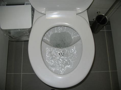 fileud flush toilet during flushing 3110646027jpg